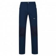 Чоловічі штани Regatta Questra III regular синій