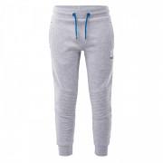 Дитячі спортивні штани Bejo Tiagos II Kdb сірий