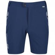 Pánské kraťasy Regatta Mountain Shorts tmavě modrá Dark Denim
