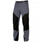 Pánské kalhoty Direct Alpine Patrol šedá grey/black