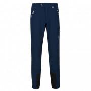 Чоловічі штани Regatta Mountain Wntr Trs синій