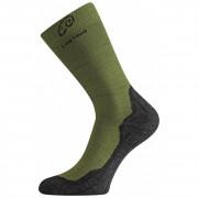 Ponožky Lasting WHI tmavě zelená zelená