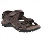 Pánské sandály Regatta Haris hnědá peat
