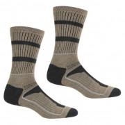 Чоловічі шкарпетки Regatta Samaris3SeasonSck коричневий