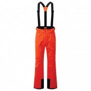 Чоловічі штани Dare 2b Achieve II